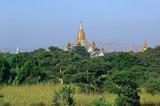 myanmar, bagan: panorama poster