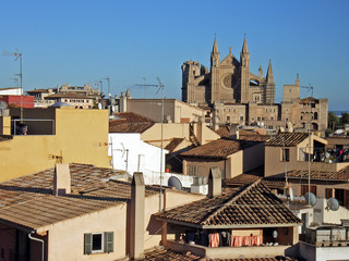 palma cathedral over the roofs