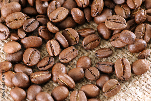 grains of natural coffee