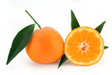 mandarin orange - citrus reticulata