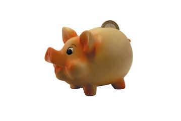 ceramic piggy bank isolated