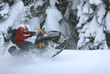 snowmobile roost