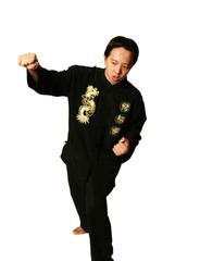 kung fu boy punching 2