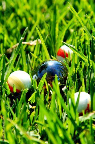 balls in the grass