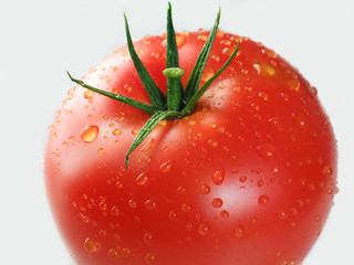 red tomato (part)