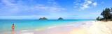 panorama beach poster