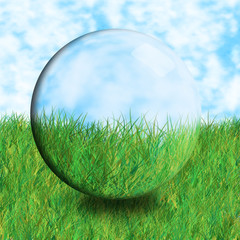 glass ball grass