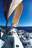 Fototapeta sailing 5
