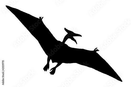 Papier peint dinosaure volant dinosaure noir - Dinosaur volant ...