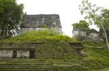 overgrown mayan ruins poster