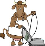 cow using a vacuum poster