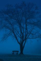 blue pew