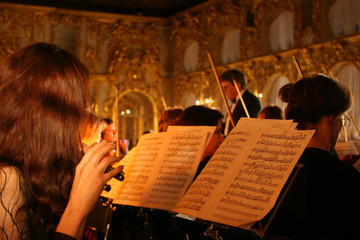 performance of an orchestra in a palace