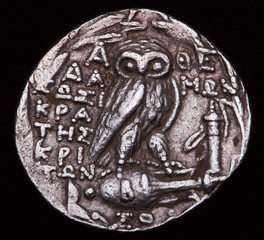 greek silver coin owl