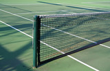 tennis court net poster