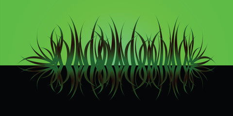 grass reflect green
