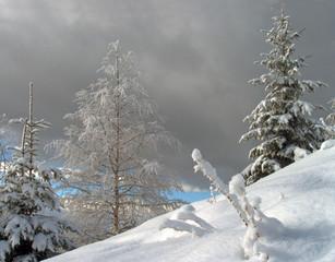 snowfall beginning