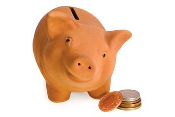 piggy with money