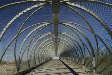 tucson snake bridge interior
