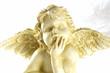 Quadro engel