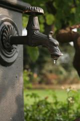 fontana dalla testa di grifone con goccia d'acqua