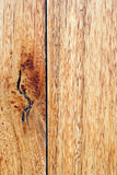 timber grain background poster