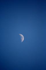spicchio di luna al crepuscolo