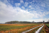 countryside scenery - fall/winter poster