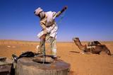 un nomade puise de l'eau d'un puits au sahara
