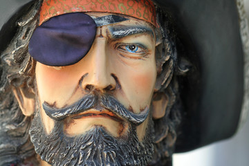 portrait of a pirate