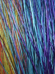 multicolored reeds