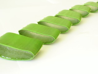row of sliced aloe