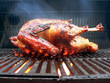 grilled - marinated turkey on the grill 2