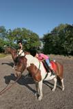 horse riding pleasure poster