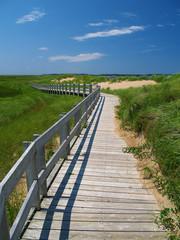 wodden path 2