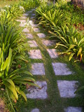 cobbled stone pathway poster