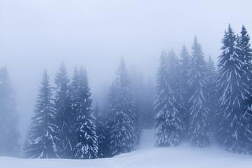 neige080
