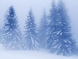 neige082