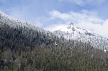 neige110