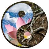 Fototapety yin-yang 5