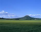 landschaft mit dem hügel poster