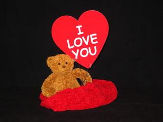 lover bear