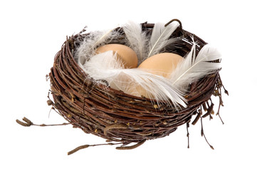 birds nest with eggs and feathers. easater