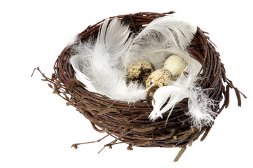 birds nest with eggs and feathers. easter