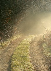 mistry path