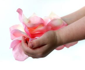 hand full of petals 3