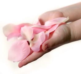 hand full of petals