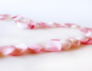 rose petals heart 2