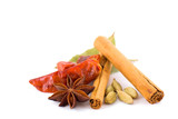 selection of exotic spices poster