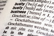 business in dictionary